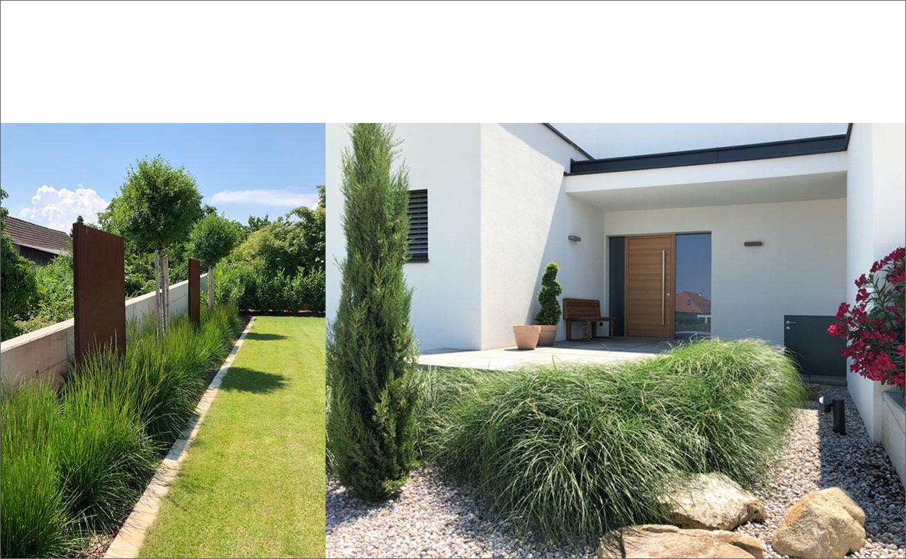 Eingangsbereich und Gartendetail