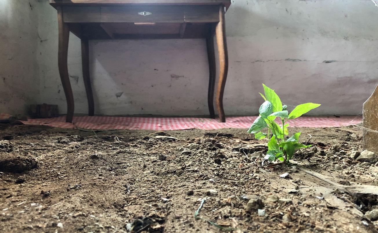 Zustand des Bodens in der alten Stube, da zieht neues Leben ein.